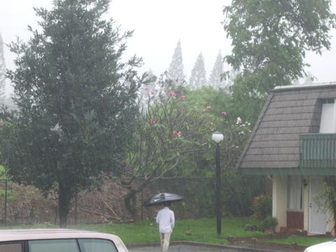 Rainy_days_32006_003_1