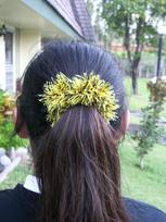 Scrunchie_on_ponytail_2