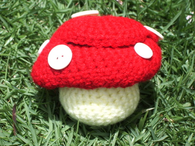 Strawberries_and_crocheted_mushroom_4170_2